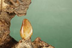 「藏玉臻品」炽热,红皮原石,新疆和田籽料,邀您共赏